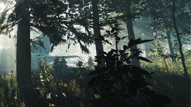 Хоррор в открытом мире The Forest выйдет на PS4