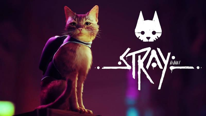 Приключение кота Stray готовится к выходу на PS4 и PS5 в начале 2022 года
